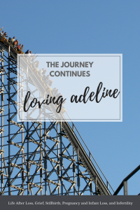 The Fertility Journey Continues - Loving Adeline