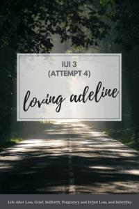 LOVING ADELINE IUI 3